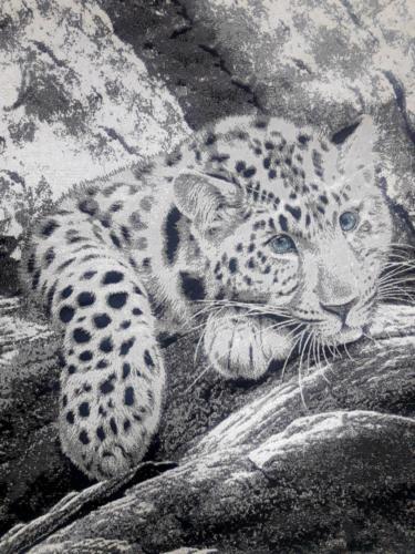 Gepard 2 (1)